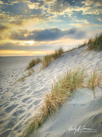 Oxnard Beach iPhone / Smartphone photography Workshop