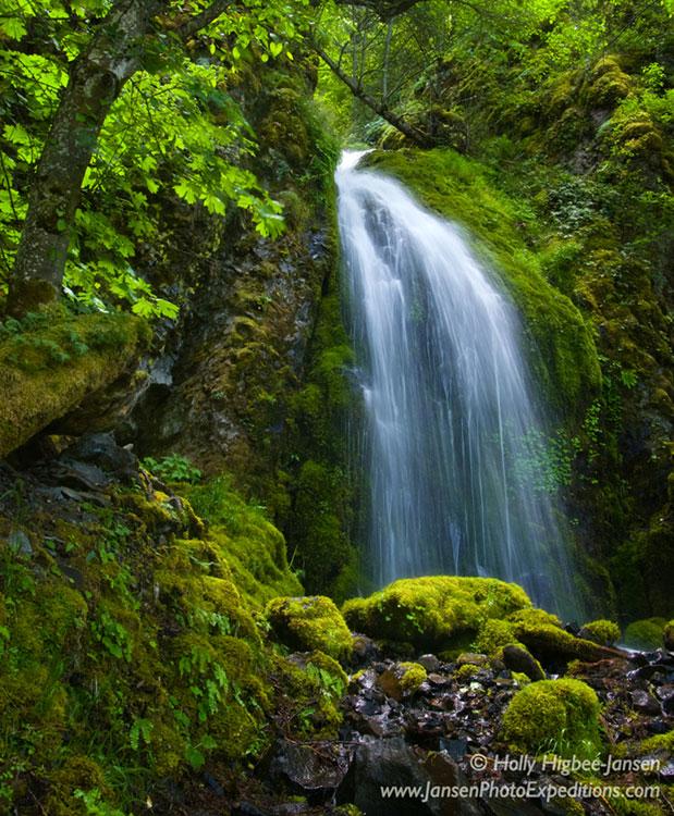 Wonder Falls Photography, Oregon