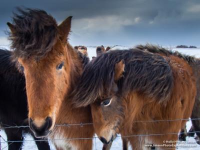 Iceland Photo Workshop, www.JansenPhotoExpeditions