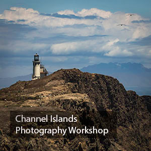 Channel Islands Photography Workshop www.JansenPhotoExpeditions.com