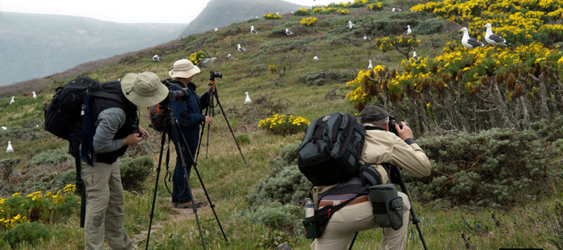 Anacapa Island Photography Workshop