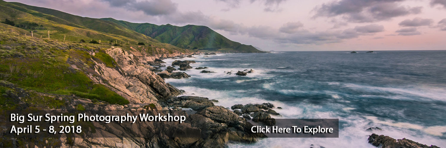 Big Sur Spring Photography Workshop