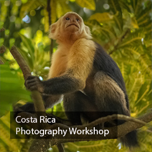 Costa Rica Photography Workshop