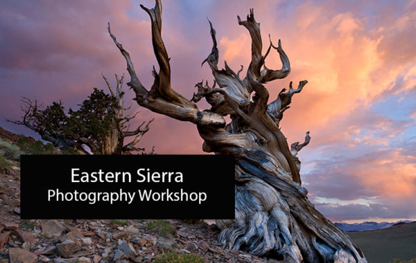 Eastern Sierra Photography Workshop