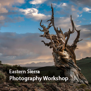 Eastern Sierra Photography Workshop