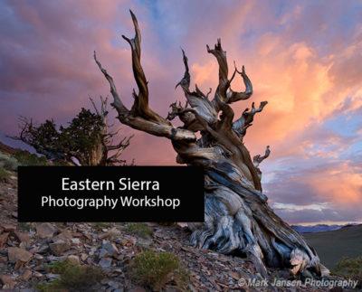 Digital-Photography-Workshop