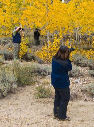 Eastern-Sierra Fall-Colors-Photography-Workshop