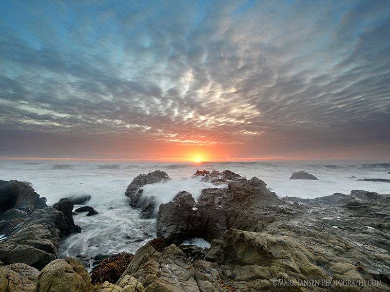 Central Coast, California Photography Workshop