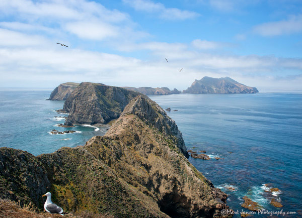 Anacapa Island Photography Workshop View