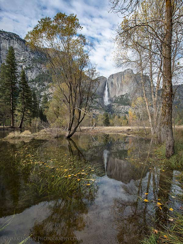 Private Photography Workshop Yosemite