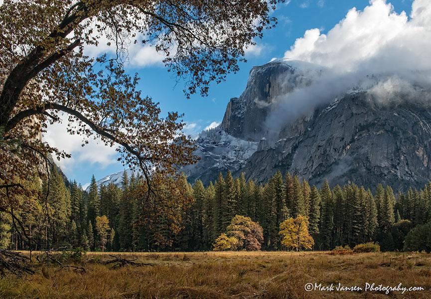 Yosemite Fall Foliage Photography Workshop