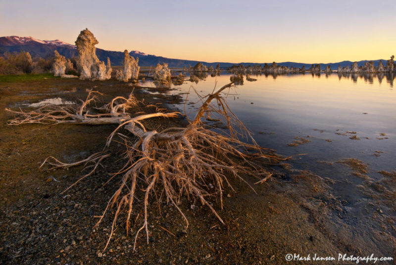 photography workshop in the Eastern Sierra