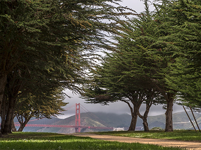 San Francisco Photography Workshop with Jansen Photo Expeditions