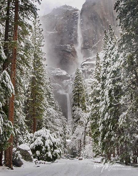 Yosemite Private Photography Workshop