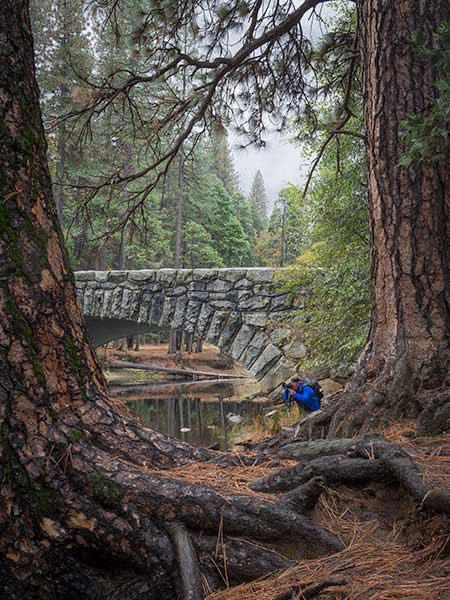 Yosemite-Photography-workshop