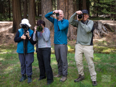Group Photography Workshop Yosemite