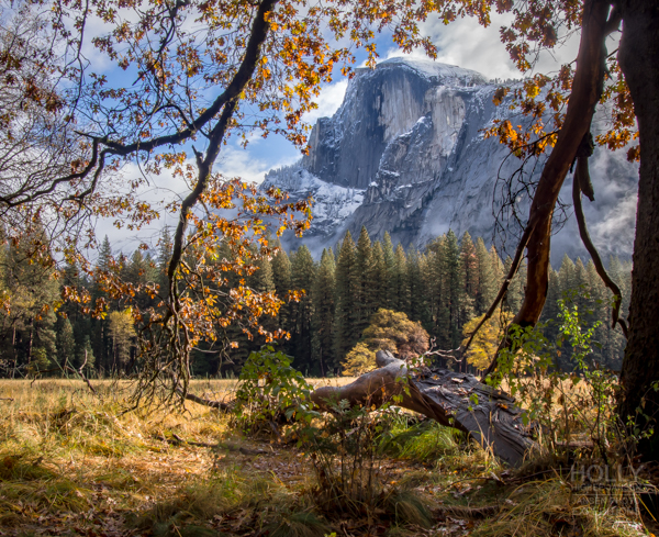 Yosemite Fall Photography Workshop withJansen Photo Expeditions