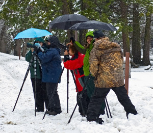 Yosemite winter photography Workshop l Jansen Photo Expeditions